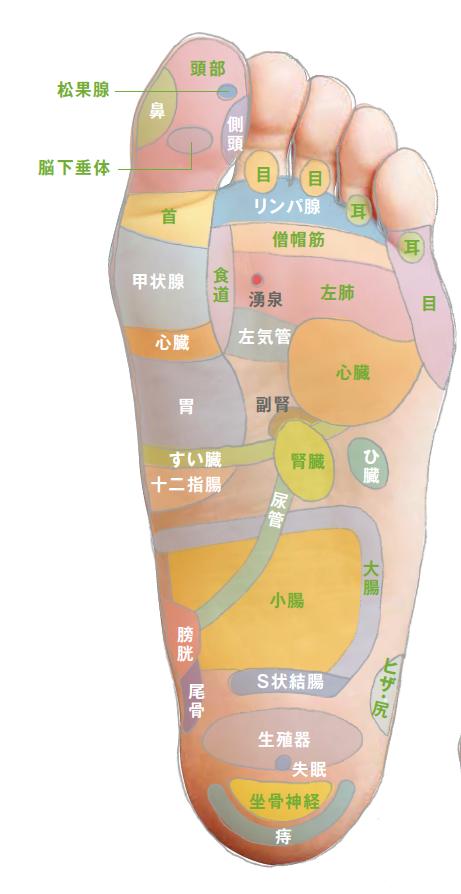 ツボ 症候群 むずむず 脚 ぼつぼつツボで養生しませんか? むずむず脚症候群に効果的なツボ